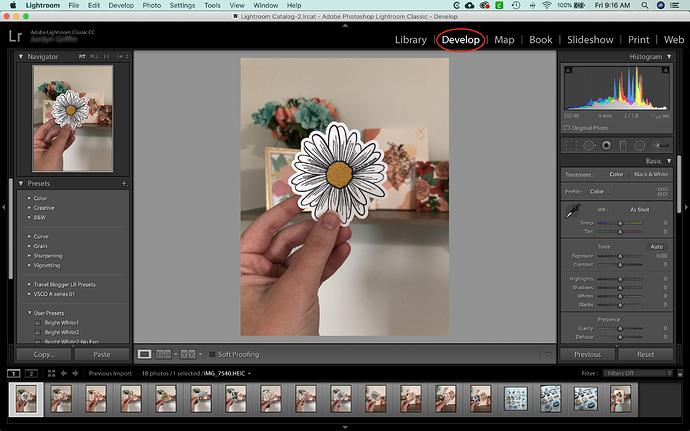 Screen Shot 2020-07-10 at 9.16.38 AM