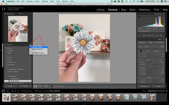 Screen Shot 2020-07-10 at 9.18.09 AM