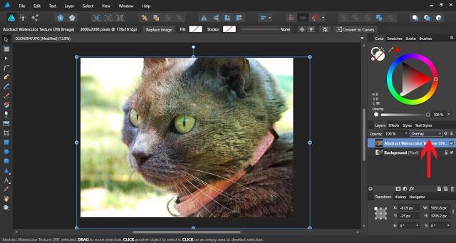 textures in affinity designer 6