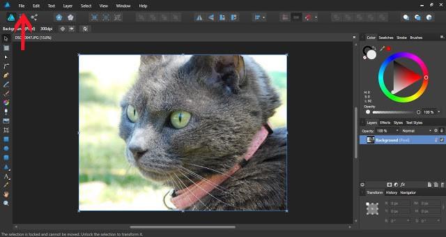 textures in affinity designer 3